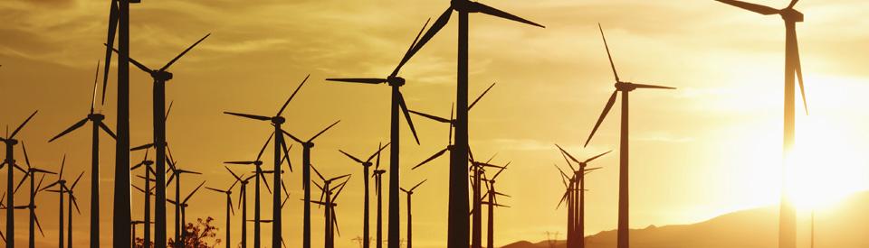 California Wind Power